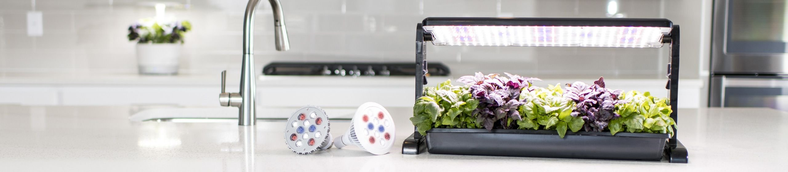 LED Grow Lights for Plants