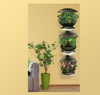 Note: This product requires additional S&H ($89.95 + $9.95 Extra Shipping and Handling = $99.90) DESCRIPTION:The 3-Shelf Wall Garden is designed to free up counter space while growing 3 AeroGardens vertically. An attractive stand for serious AeroGardeners! Includes everything you need to attractively display three gardens vertically using limited floor space. Stunningly beautiful, creates living art in any room. Includes hidden power strip and hardware for mounting to the wall. Works with both AeroGarden Classic 7-Pod and Classic 6-Pod. Easy to assemble. Silver finish on steel. NOTE: Not compatible with AeroGarden SpaceSaver 6.