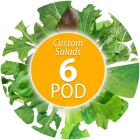 Custom Salad Seed Pod Kit (6-Pod)