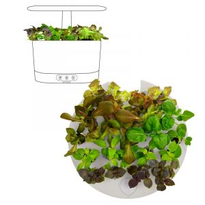 AeroGarden Seed Starting System For AeroGarden Harvest 360 Models