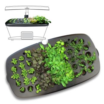 AeroGarden Seed Starting System For All Extra, Ultra and Classic Bounty Models