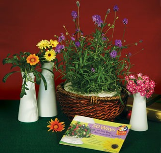 Florist Accessory Pack (White)