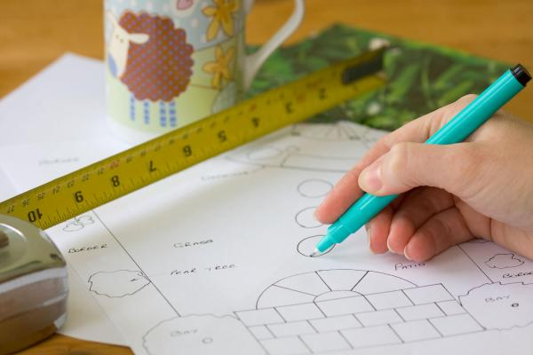 How to Create a Succession Planting Plan