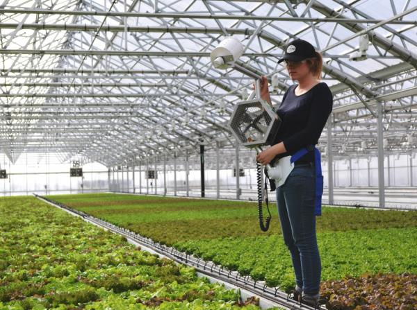 World's Largest Rooftop Greenhouse