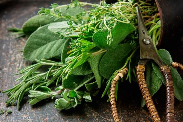 Spice Up The Holidays With Your Home Grown Herbs!