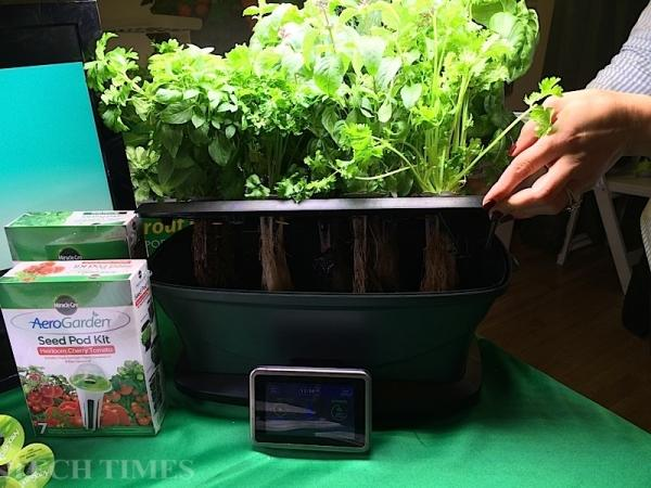 AeroGarden Lets You Work Your Green Thumb With A Tablet
