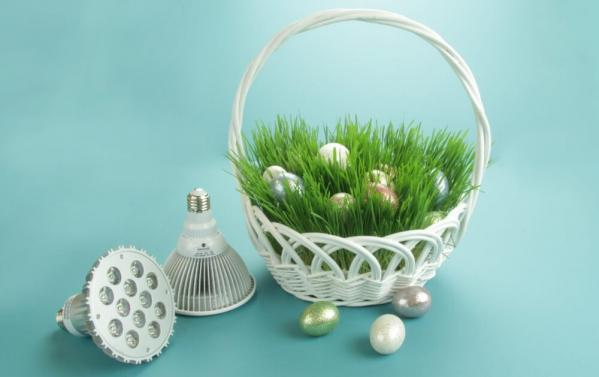 Real Easter Basket Grass!
