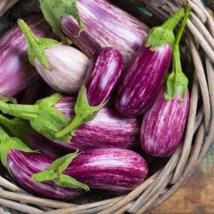 Fairy Tale Eggplant - Care and Harvest
