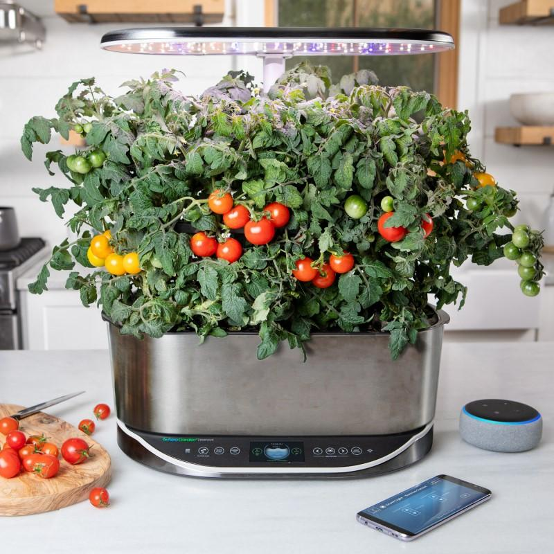 How To Connect To Alexa With Your AeroGarden