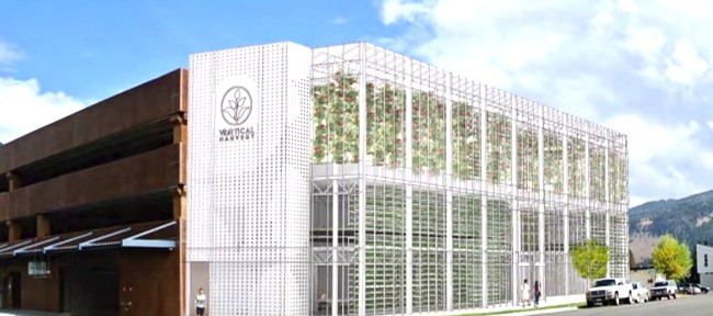 Vertical Hydroponic Farms are Changing the Future of Gardening!